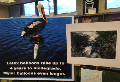 Balloon Pelican